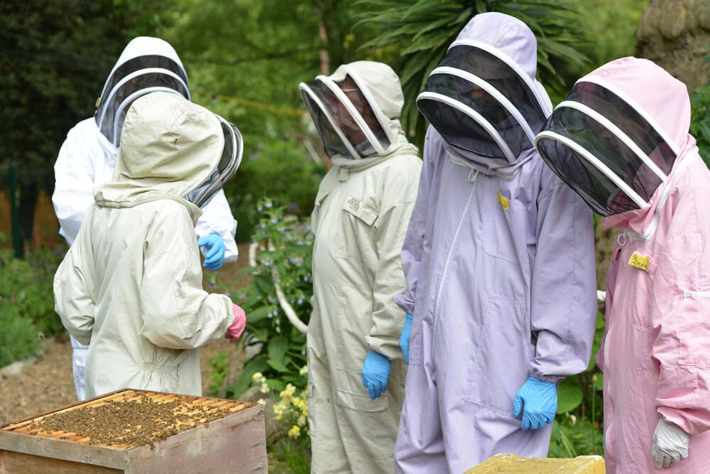 Beekeepers with bee suits